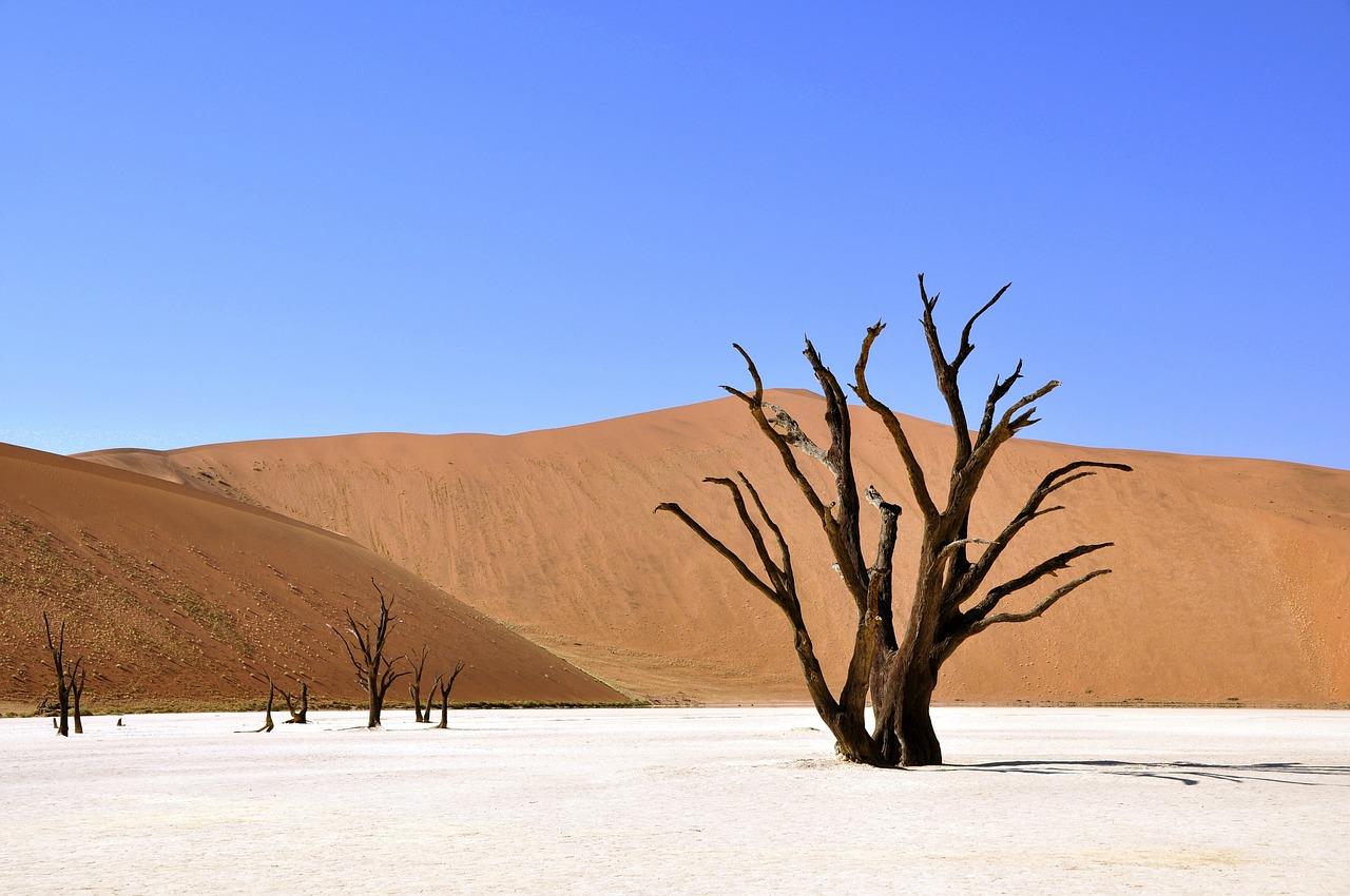 Afrika travelyst Namibia